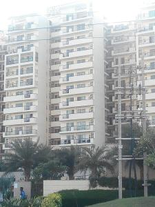 Gallery Cover Image of 1790 Sq.ft 3 BHK Apartment for rent in Sector 81 for 18500