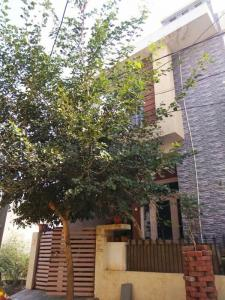 Gallery Cover Image of 100 Sq.ft 3 BHK Independent House for buy in Paldi Meena for 4500000