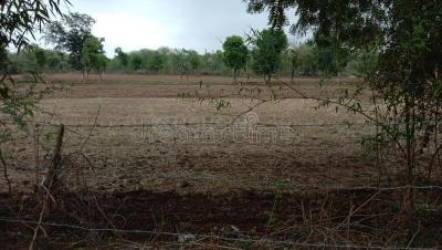 6000 Sq.ft Residential Plot for Sale in Shilphata, Thane