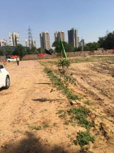 252 Sq.ft Residential Plot for Sale in Sector 70, Gurgaon