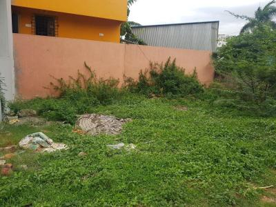 Gallery Cover Image of  Sq.ft Residential Plot for buy in Surappattu for 3100000
