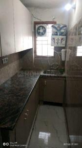 Kitchen Image of Sai PG in Sector-12A