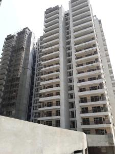 Gallery Cover Image of 1765 Sq.ft 3 BHK Apartment for buy in Noida Extension for 5750000