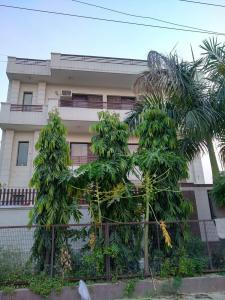 Building Image of Anay Residency in Sector 40