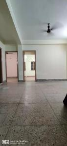 Gallery Cover Image of 1100 Sq.ft 3 BHK Independent Floor for buy in Picnic Garden for 4500000