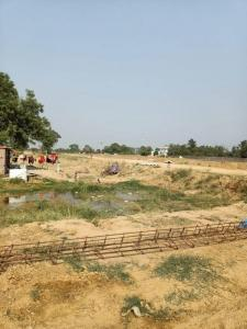 300 Sq.ft Residential Plot for Sale in Sector 75, Faridabad