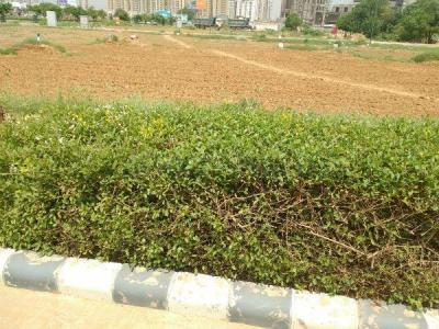 470 Sq.ft Residential Plot for Sale in Sector 83, Gurgaon