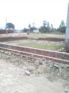 Gallery Cover Image of  Sq.ft Residential Plot for buy in Charbagh for 951000