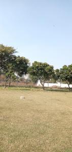 153 Sq.ft Residential Plot for Sale in Chipiyana Buzurg, Ghaziabad