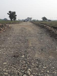 Gallery Cover Image of  Sq.ft Residential Plot for buy in Gotal Pajri for 2100000