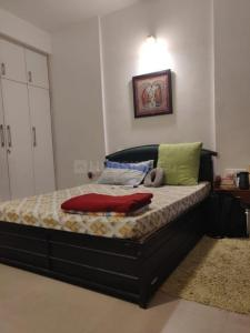 Gallery Cover Image of 1650 Sq.ft 3 BHK Apartment for rent in Noida Extension for 14000