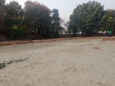 640 Sq.ft Residential Plot for Sale in Palam Farms, Gurgaon