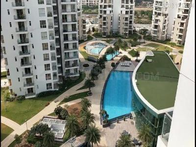 Gallery Cover Image of 2047 Sq.ft 3 BHK Apartment for buy in M3M India Merlin, Sector 67 for 19500000