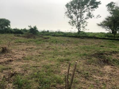 Gallery Cover Image of  Sq.ft Residential Plot for buy in Uran for 20000000