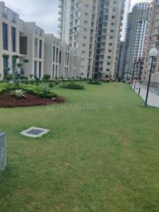 Gallery Cover Image of 1369 Sq.ft 3 BHK Apartment for buy in Apex Golf Avenue, Noida Extension for 5412000