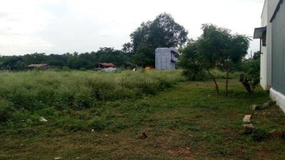 Gallery Cover Image of  Sq.ft Residential Plot for buy in Pannimadai for 3000000