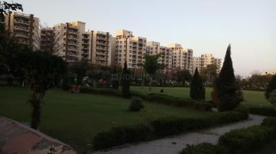 Gallery Cover Image of 1500 Sq.ft 3 BHK Apartment for buy in Manesar for 5700000