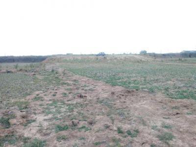 1742 Sq.ft Residential Plot for Sale in Chuttu, Ranchi