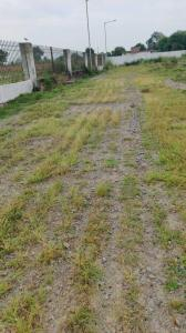 2133 Sq.ft Residential Plot for Sale in Golf City, Lucknow