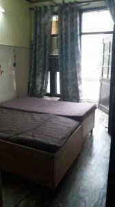Bedroom Image of PG 4040542 Pitampura in Pitampura