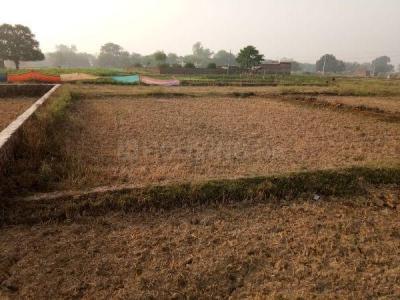 2720 Sq.ft Residential Plot for Sale in Kadipur, Varanasi