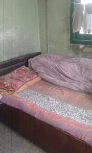 Bedroom Image of PG 4272363 Alipore in Alipore
