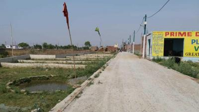 Gallery Cover Image of 900 Sq.ft Residential Plot for buy in Sector 115 for 1800000