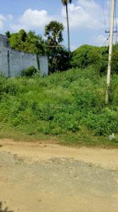 Gallery Cover Image of  Sq.ft Residential Plot for buy in Kongapalayam for 3300000