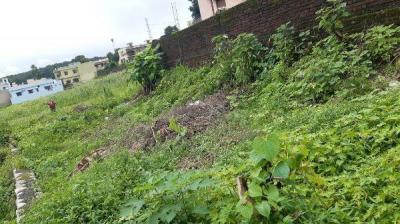 2143 Sq.ft Residential Plot for Sale in Badripur, Dehradun
