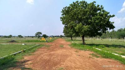 Gallery Cover Image of  Sq.ft Residential Plot for buy in Thirunindravur for 308700