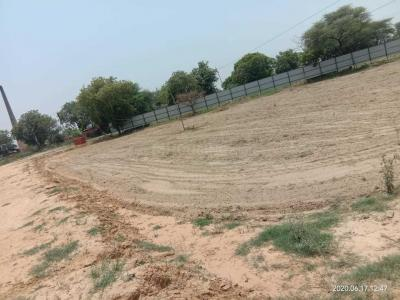 Gallery Cover Image of 3150 Sq.ft Residential Plot for buy in Sector 84 for 9000000