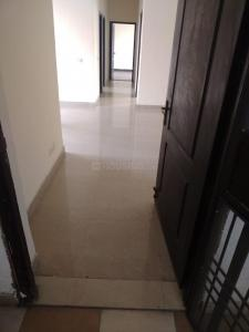 Gallery Cover Image of 1145 Sq.ft 3 BHK Apartment for rent in Aditya GZB Celebrity Homes, Sector 76 for 16500