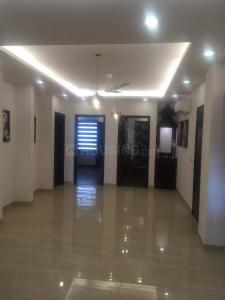 Gallery Cover Image of 2400 Sq.ft 4 BHK Independent Floor for buy in Aadhar C - 96 Ardee City, Sector 52 for 17500000