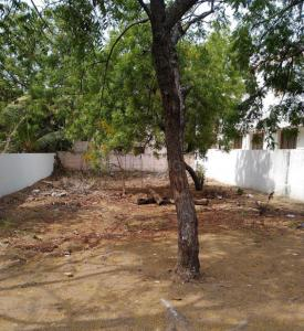 600 Sq.ft Residential Plot for Sale in Kottivakkam, Chennai