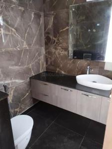 Common Bathroom Image of 1120 Sq.ft 2 BHK Independent Floor for rent in Omaxe Grand Woods, Sector 93B for 20000