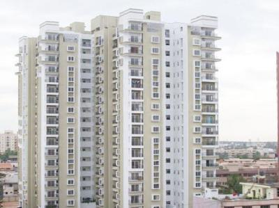 Gallery Cover Image of 1551 Sq.ft 3 BHK Apartment for rent in JP Nagar for 35000