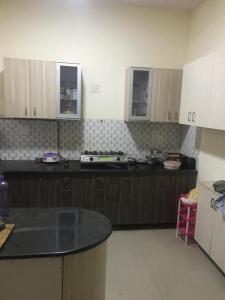 Gallery Cover Image of 1462 Sq.ft 2 BHK Apartment for buy in Sector 16 for 6500000