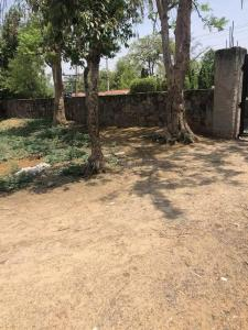 990 Sq.ft Residential Plot for Sale in Baliawas, Gurgaon