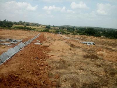 600 Sq.ft Residential Plot for Sale in Ashok Nagar, Bangalore