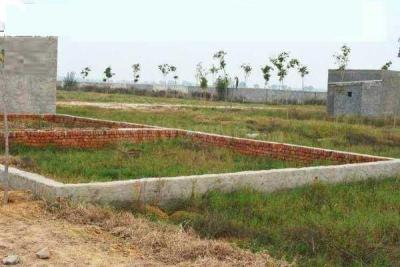 1620 Sq.ft Residential Plot for Sale in Sector 147, Noida