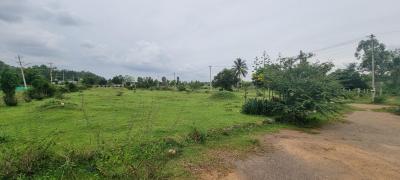 3710 Sq.ft Residential Plot for Sale in Chikkanahalli, Bangalore