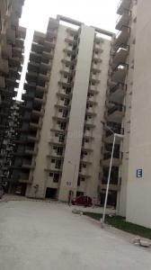 Gallery Cover Image of 800 Sq.ft 2 BHK Apartment for rent in Op Floridaa, Sector 82 for 7000