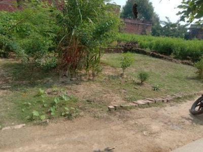1350 Sq.ft Residential Plot for Sale in Bhullanpur, Varanasi