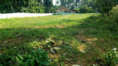 10454 Sq.ft Residential Plot for Sale in Kizhakkumpattukara, Thrissur