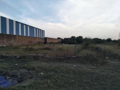 4500 Sq.ft Residential Plot for Sale in Sector 11, Faridabad