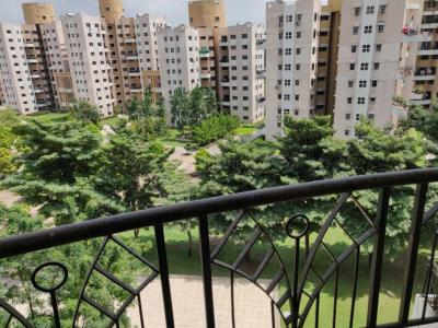 Gallery Cover Image of 1230 Sq.ft 2 BHK Apartment for rent in Magarpatta City for 25000