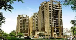 Gallery Cover Image of 1150 Sq.ft 2 BHK Apartment for rent in Earthcon Casa Grande, Chi V Greater Noida for 10000