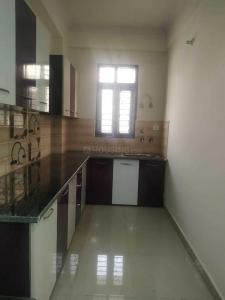 Gallery Cover Image of 2400 Sq.ft 4 BHK Apartment for rent in Sector 53 for 82000