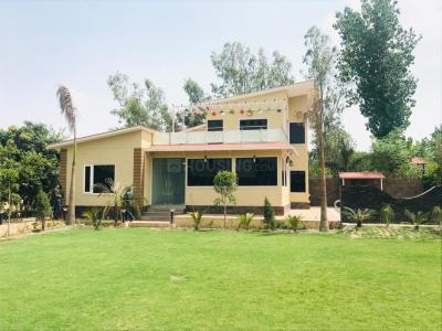 Gallery Cover Image of 4000 Sq.ft 2 BHK Villa for buy in Sector 135 for 7000000