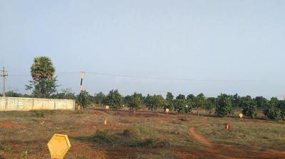 140 Sq.ft Residential Plot for Sale in Diwancheruvu, Rajahmundry
